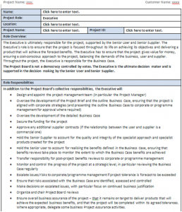 Prince2 Executive Role worksheet