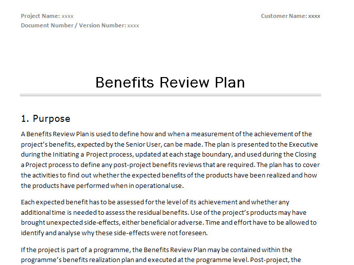 How do i write a business plan review handwingforkids for Princess trust business plan template