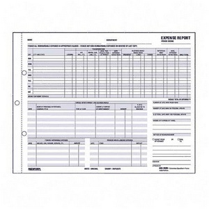 Carbonless Expense Report Form  Detailed Expense Report Template