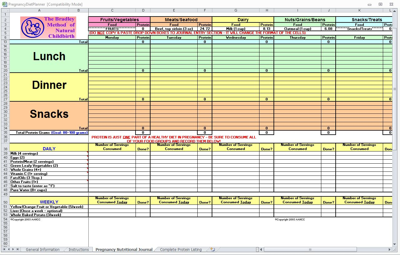 Pregnancy Diet Spreadsheet Pregnancy Diet Template