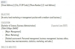 screenshot of the Resume Template Word