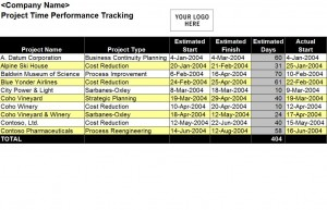Photo of the Performance Tracking Template Excel sheet