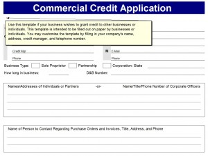 Credit Lication Form