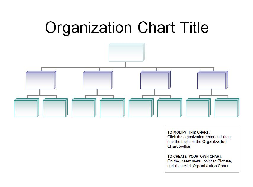 word org chart template
