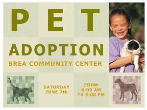 Pet adoption template pet adoption flyer template pet adoption template pronofoot35fo Images