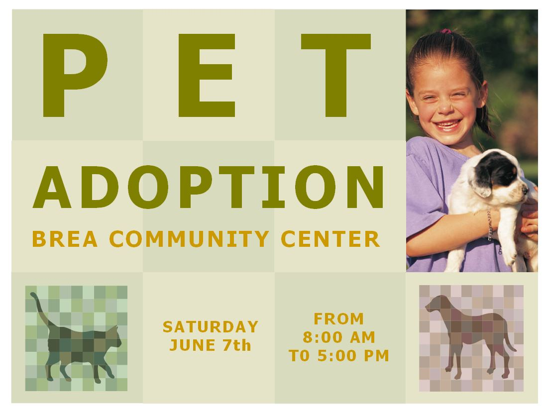 Pet Adoption Flyer Template Free Timiznceptzmusic