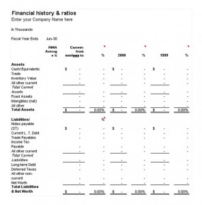 Download the Financial History and Ratios Template