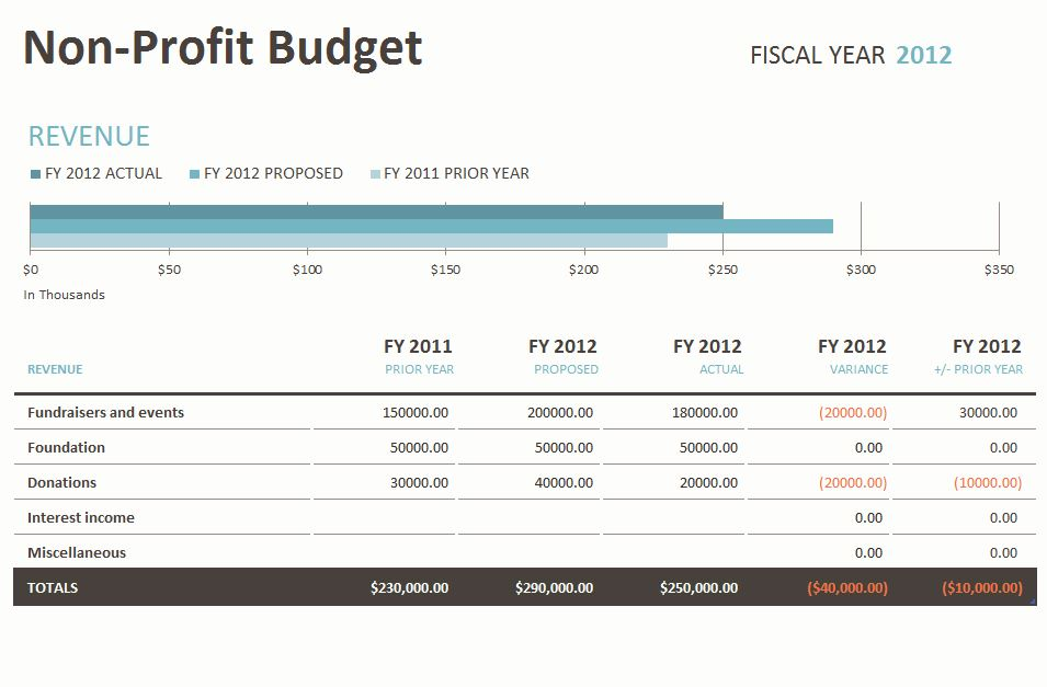 Non profit organization budget northurthwall pronofoot35fo Images