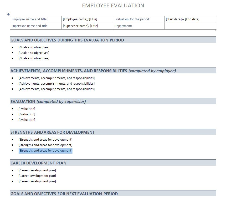 Performance Evaluation Template | Performance Evaluation Sheet