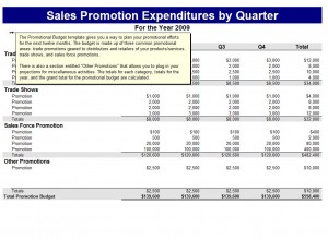 The Microsoft Promotional Budget Template