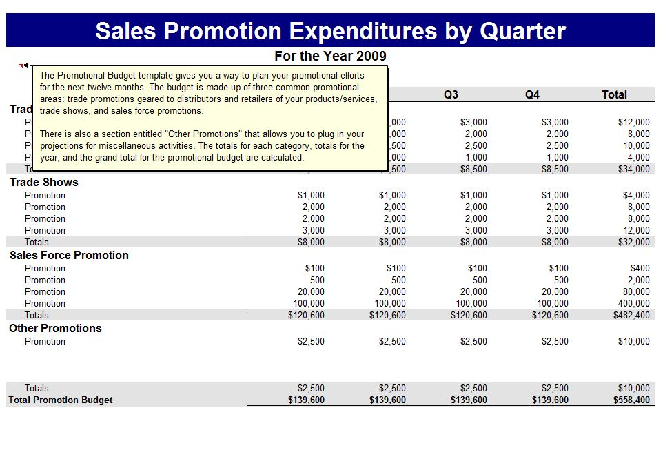 Microsoft's Promotions Budget Template