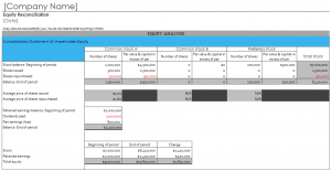 Shareholder Equity Report Template