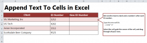 How to Append Text in Excel