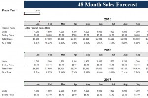 48-Month-Sales-Record-Forecast