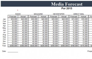 Multi-Channel-Media-Forecast-Template