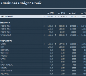 Business Budget Book1