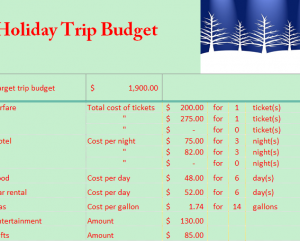 Holiday Travel Budget