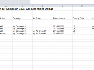 campaign level call extensions