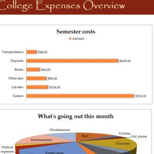College Expense Overview