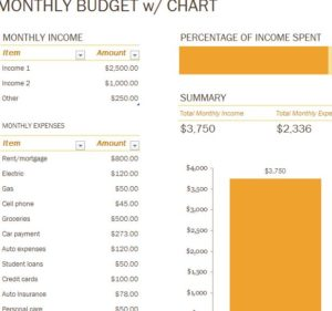 Monthly Budget with Chart