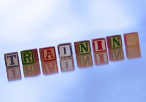 erp implementation training