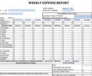weekly expense sheet