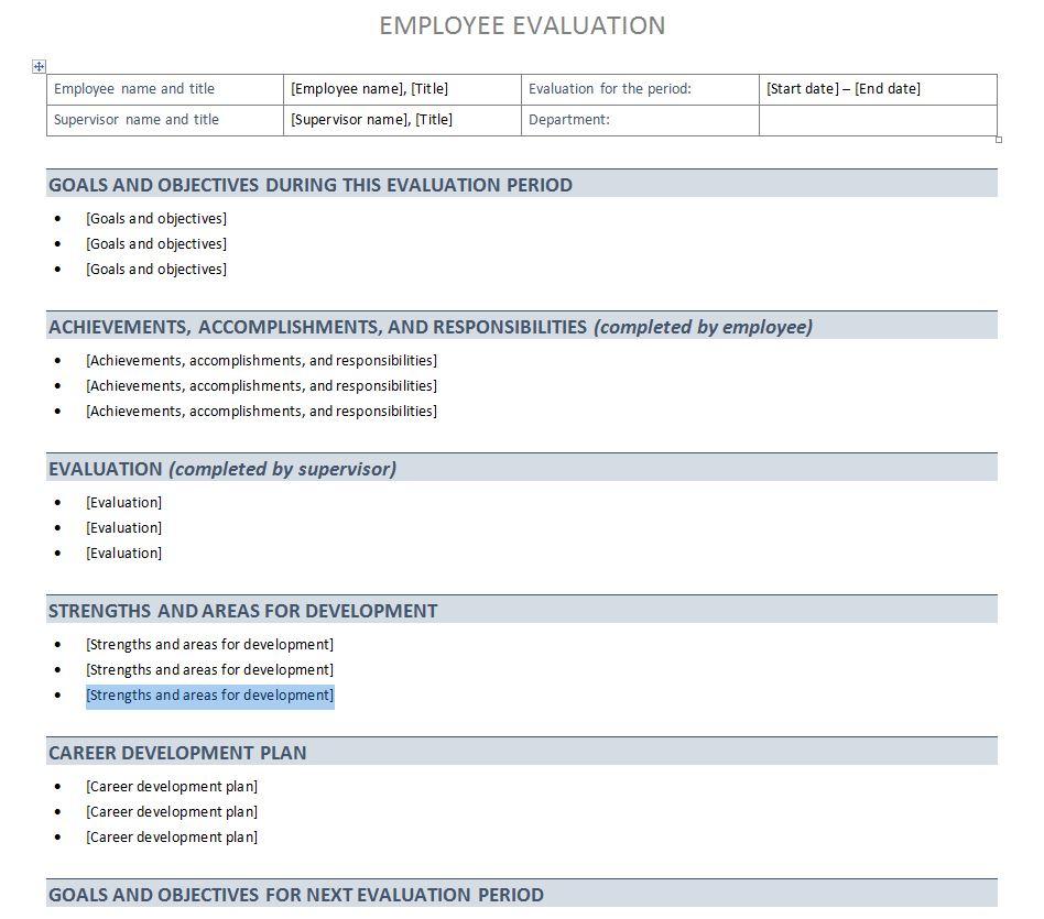 Performance Evaluation Template | Performance Evaluation Sheet