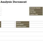 Risk Analysis Document